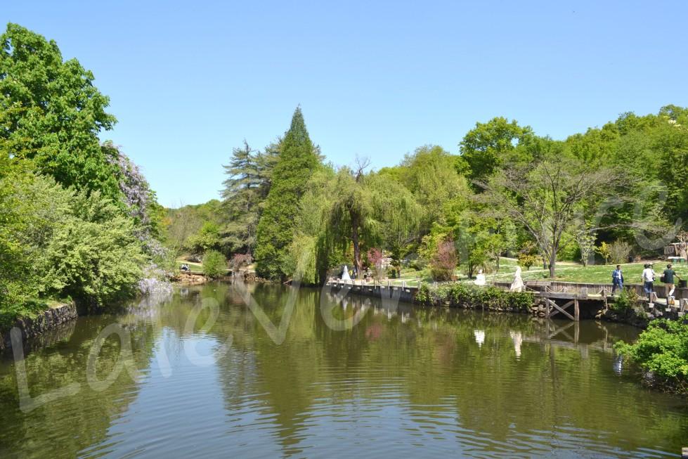 laleventure istanbul one of the lakes in Atatürk Arboretum